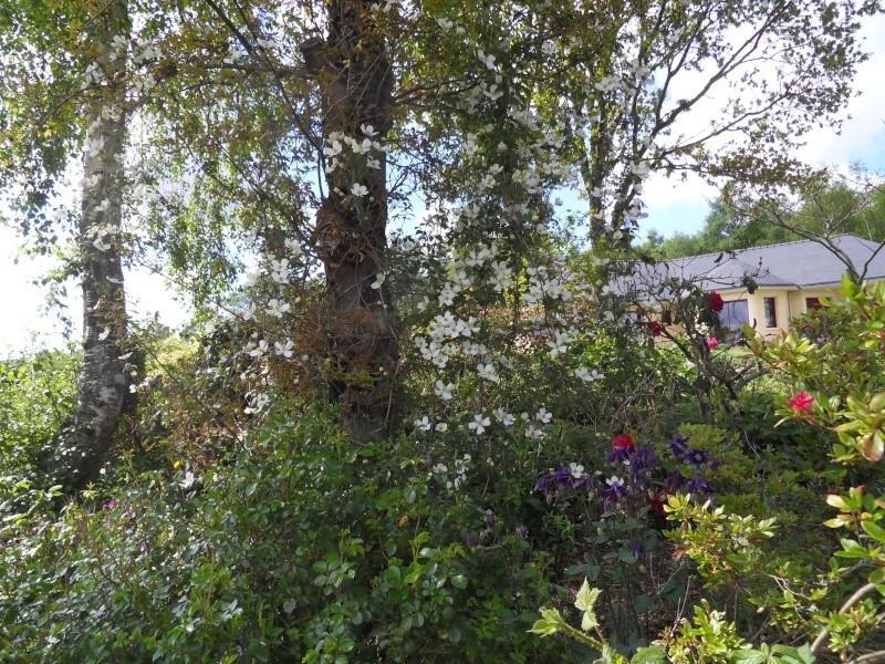 le jardin de danyland Sdc19113