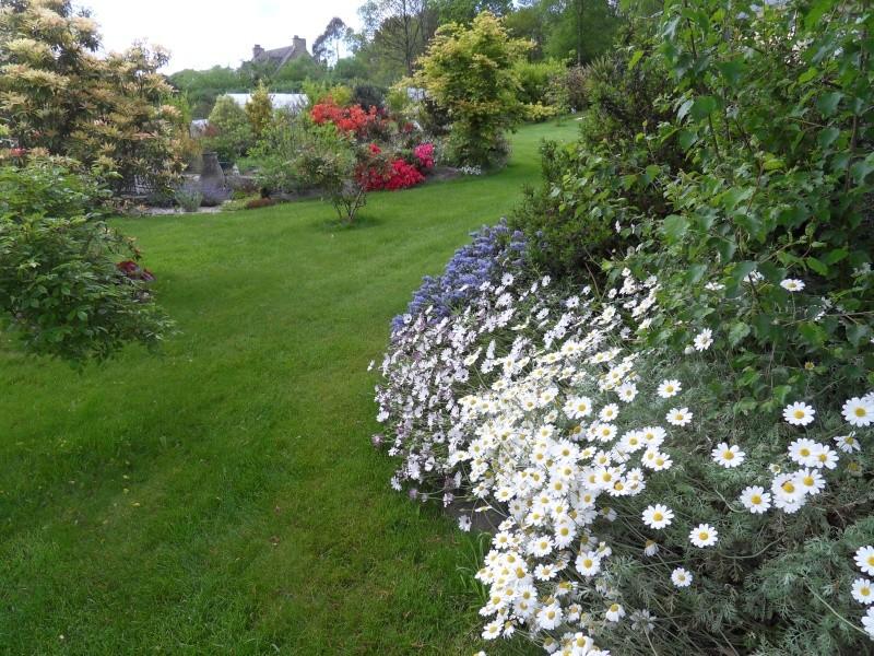 le jardin de danyland Sdc19115