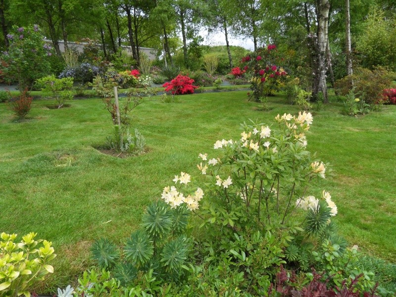 le jardin de danyland Sdc19221