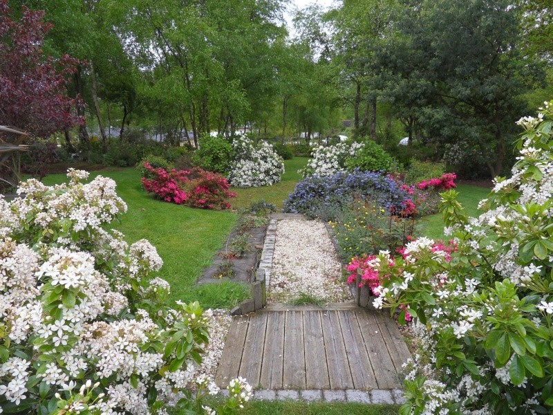 le jardin de danyland Sdc19225