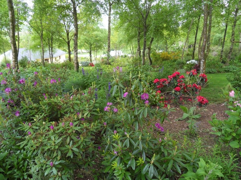 le jardin de danyland Sdc19230