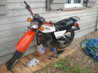 DTMX 125 cc MEMBRES : Personnalisées Photo011