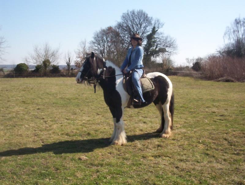 carnaval à cheval 112