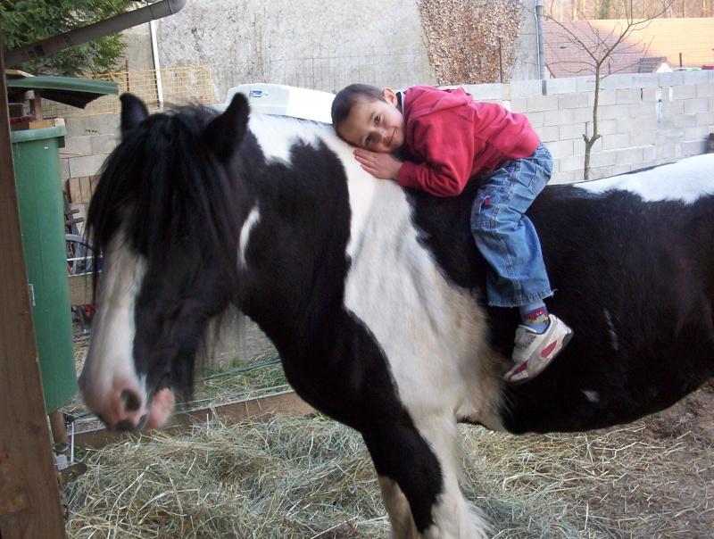 carnaval à cheval 710