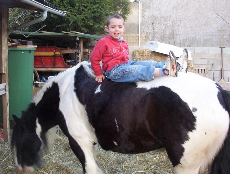 carnaval à cheval 810