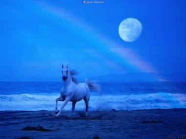 Horoscope - Page 6 20637110