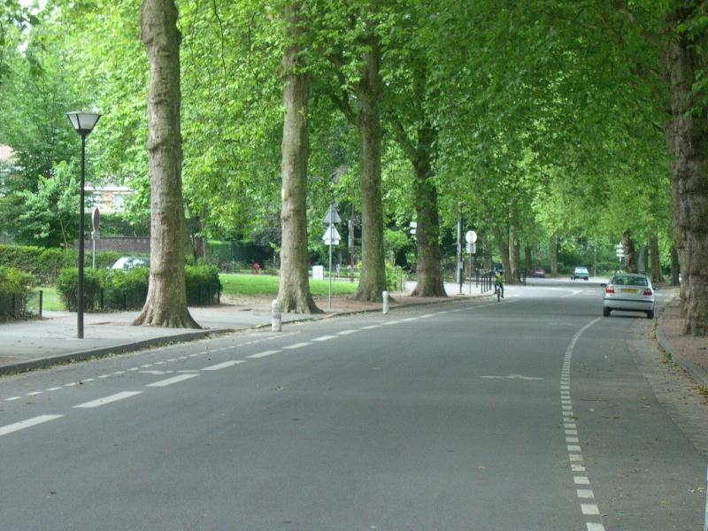 25 octobre Championnats de France des 50 Km Roubaix Dscn4210