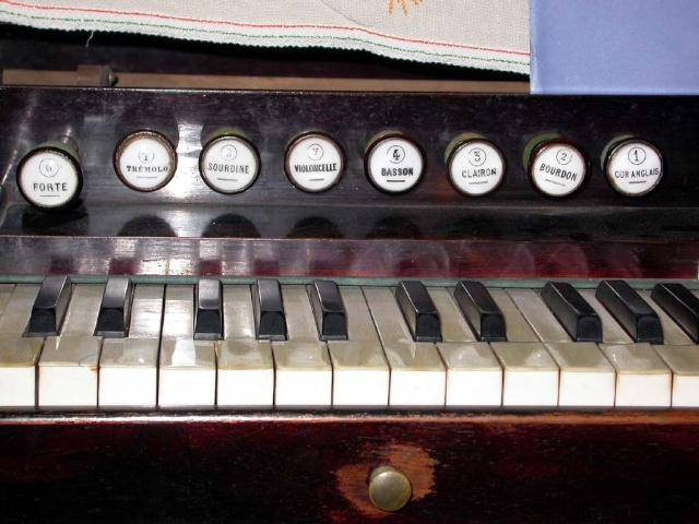Harmonium COCU Cocuje10