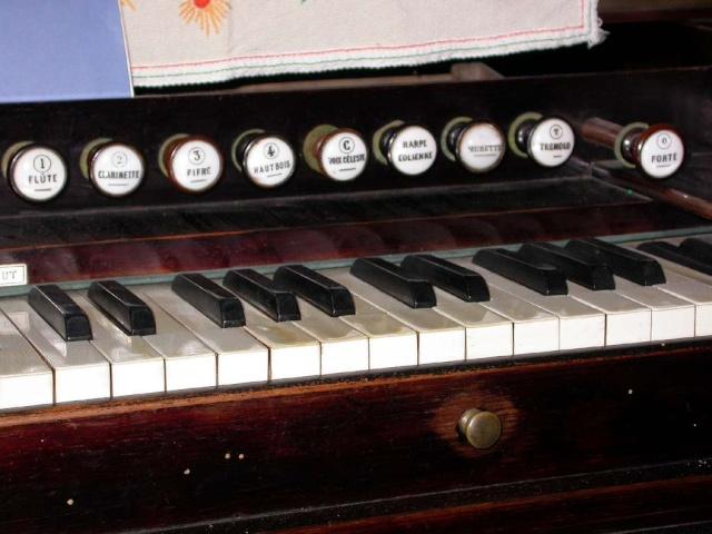 Harmonium COCU Cocuje11