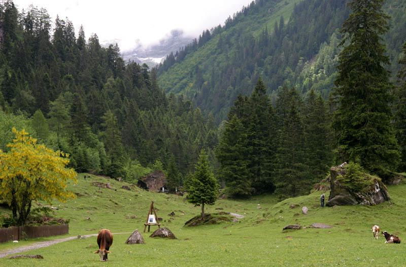 La section Vosges-Alsace-Lorraine de la SAJA - Page 4 Img_8413