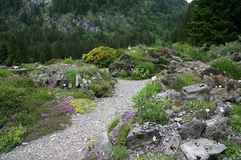 La section Vosges-Alsace-Lorraine de la SAJA - Page 4 Img_8415