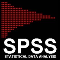 SPSS 18 en Español Spss10