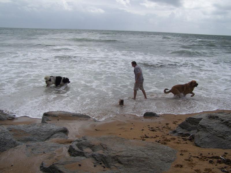 Vacances à la mer, Septembre 2009 100_6113