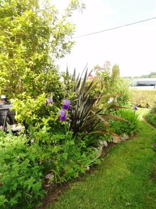 (22, 29, 35, 56) Bienvenue dans mon jardin - visite de jardins privés Dsc01839