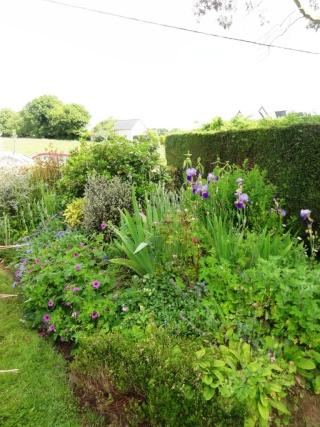 (22, 29, 35, 56) Bienvenue dans mon jardin - visite de jardins privés Dsc01840