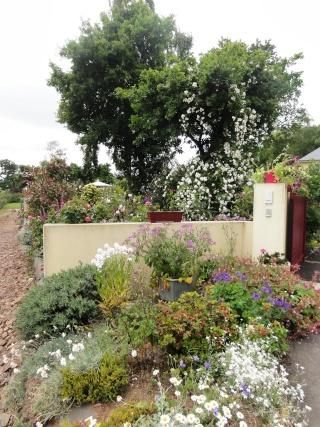 (22, 29, 35, 56) Bienvenue dans mon jardin - visite de jardins privés Dsc01850