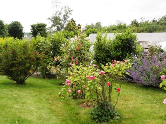 (22, 29, 35, 56) Bienvenue dans mon jardin - visite de jardins privés Dsc01859