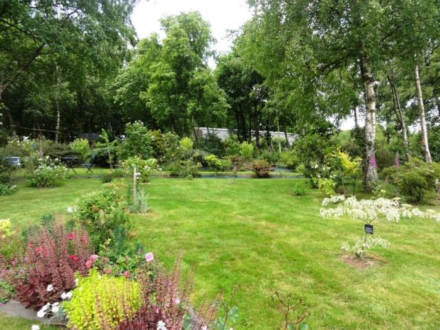 (22, 29, 35, 56) Bienvenue dans mon jardin - visite de jardins privés Dsc01861