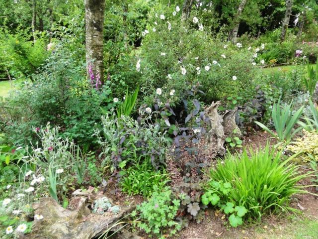(22, 29, 35, 56) Bienvenue dans mon jardin - visite de jardins privés Dsc01912