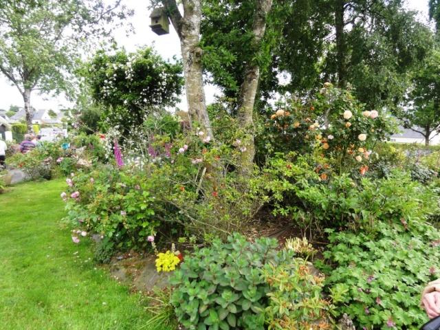 (22, 29, 35, 56) Bienvenue dans mon jardin - visite de jardins privés Dsc01920