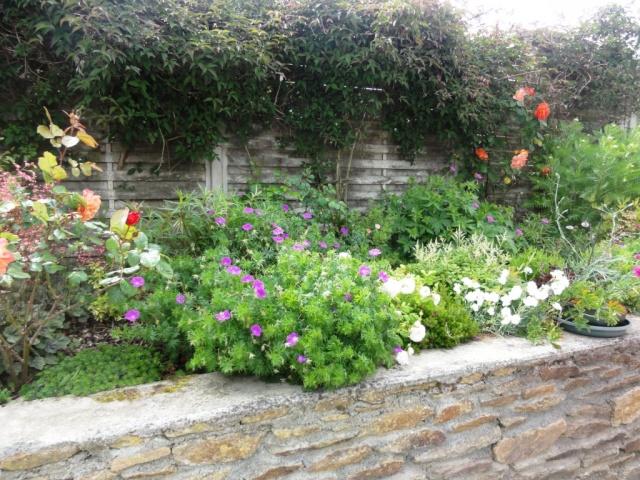 (22, 29, 35, 56) Bienvenue dans mon jardin - visite de jardins privés Dsc01926