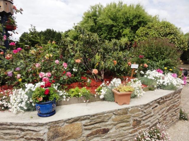 (22, 29, 35, 56) Bienvenue dans mon jardin - visite de jardins privés Dsc01927