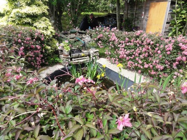 (22, 29, 35, 56) Bienvenue dans mon jardin - visite de jardins privés Dsc01933
