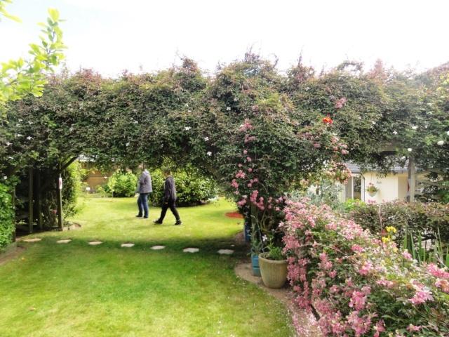 (22, 29, 35, 56) Bienvenue dans mon jardin - visite de jardins privés Dsc01936