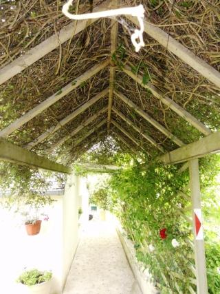 (22, 29, 35, 56) Bienvenue dans mon jardin - visite de jardins privés Dsc01937