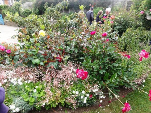 (22, 29, 35, 56) Bienvenue dans mon jardin - visite de jardins privés Dsc01943