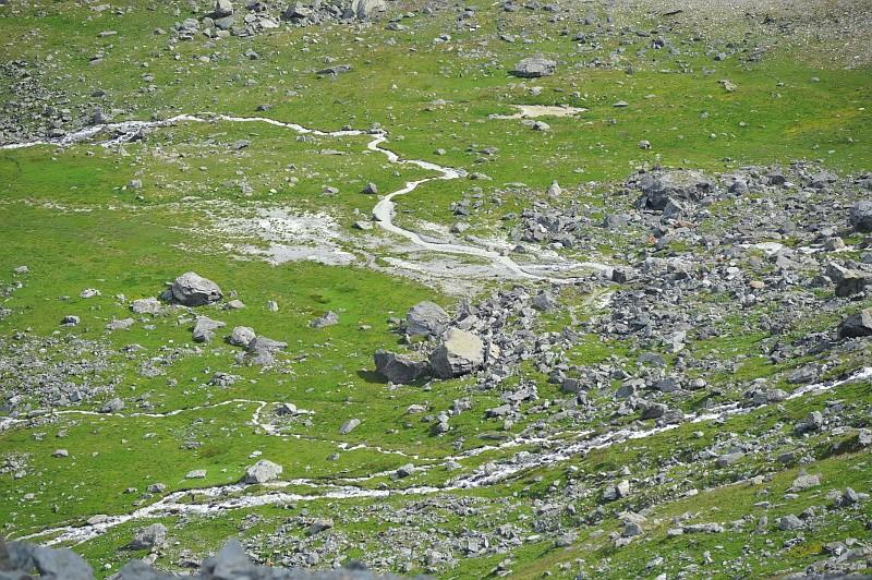 Escapade au Glacier Plan Dsc_5311