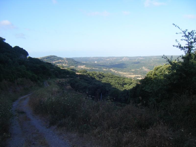 Sardaigne été 2009 Dscf7429