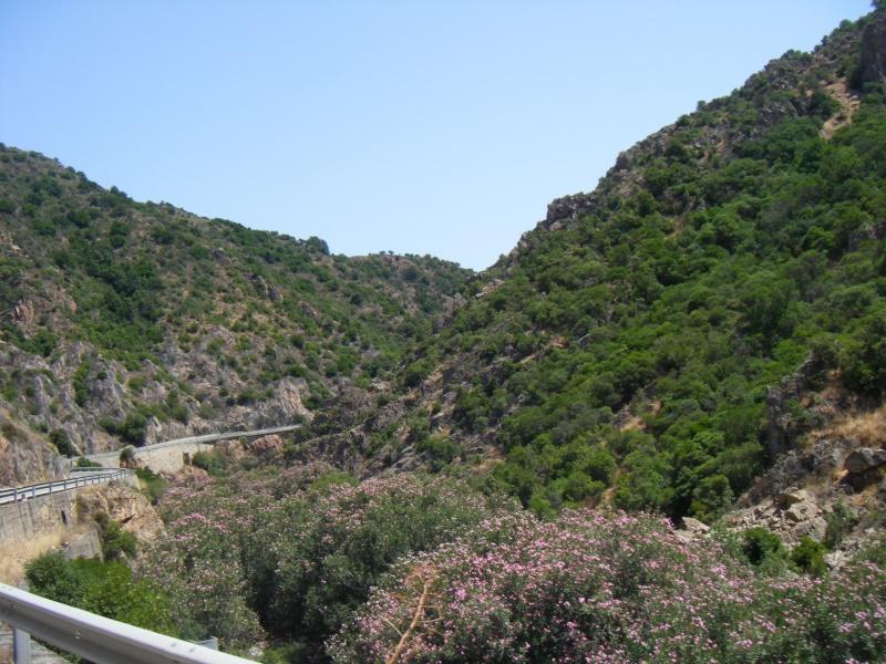 Sardaigne été 2009 Dscf7533