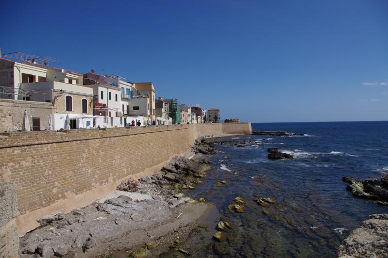 Retour de Sardaigne (mai 2013) Imgp0715