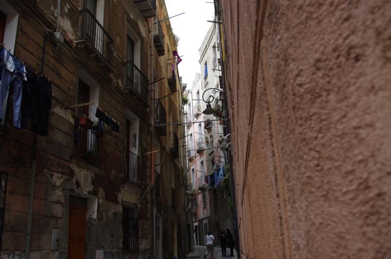 Retour de Sardaigne (mai 2013) Imgp0817
