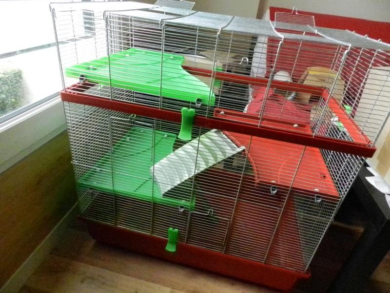 Vends cage imac rat 80 ~~ A clôturer ~~ 007_210