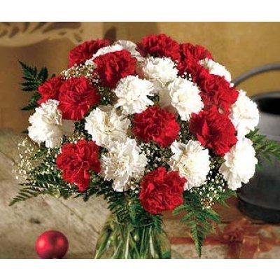 Florile noastre preferate Garoaf10