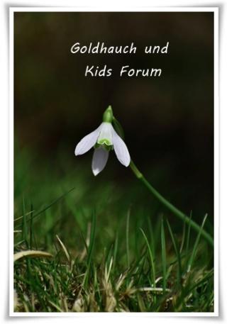 Goldhauch und Kids - Portal Pexels12
