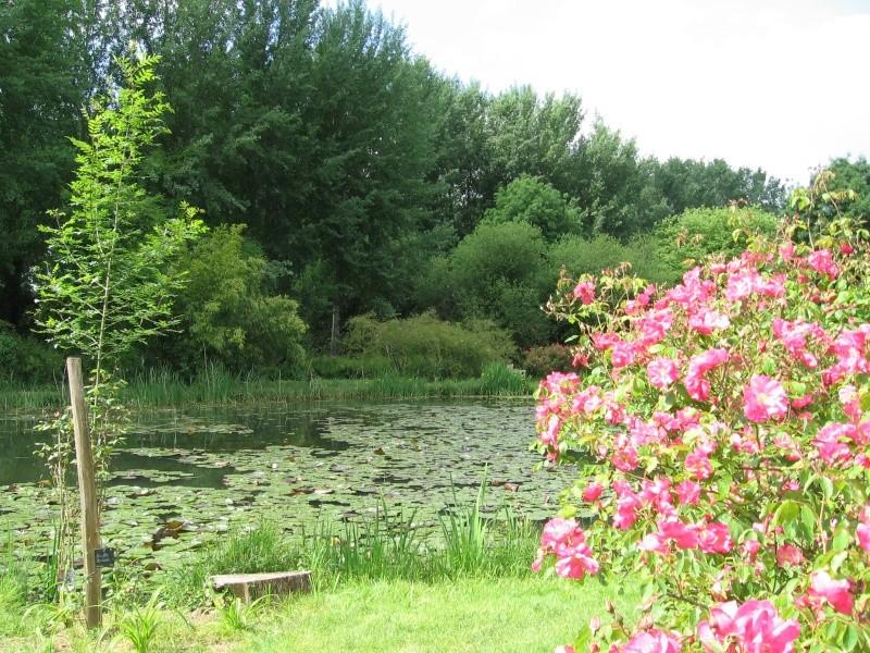 Les chemins de la rose Doué la Fontaine Img_0615