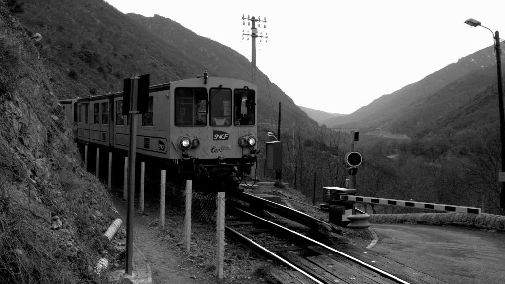 Le petit train jaune _mg_6010