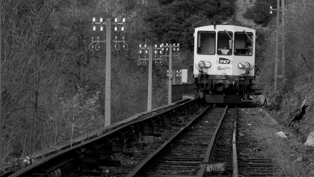 Le petit train jaune _mg_6011