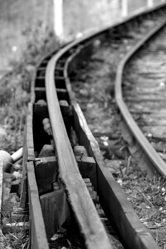 Le petit train jaune Img_6010