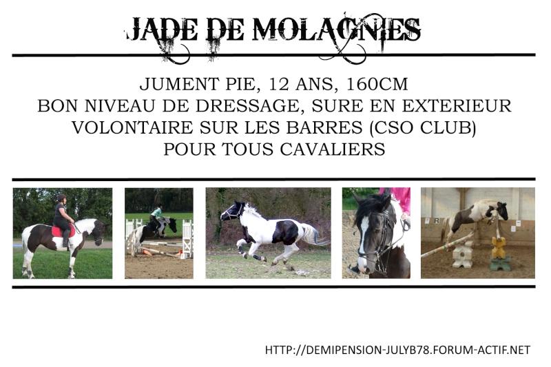 Demi-pension sur chevaux de proprio dans le78 - Portail Jade11
