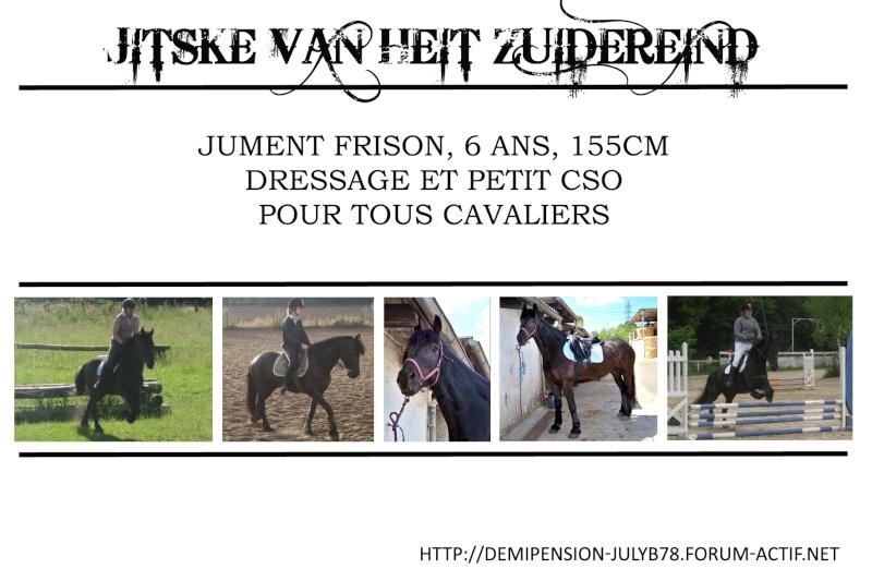 Demi-pension sur chevaux de proprio dans le78 - Portail Jitske11