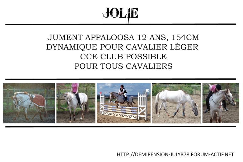 Demi-pension sur chevaux de proprio dans le78 - Portail Jolie11