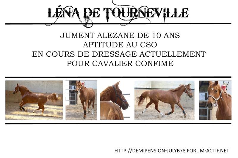 Demi-pension sur chevaux de proprio dans le78 - Portail Lana11