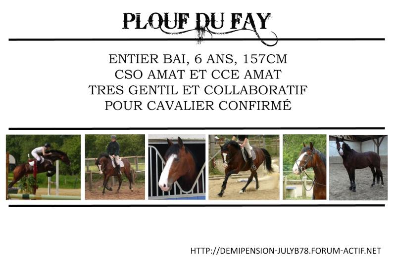 Demi-pension sur chevaux de proprio dans le78 - Portail Plouf10