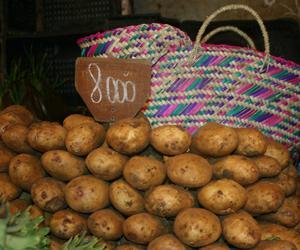 L'Algérie et la pomme de terre !!! Pomme_10