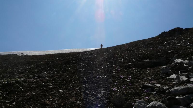 Juin 2009 - Un petit road trip aux 2 Alpes P1050212