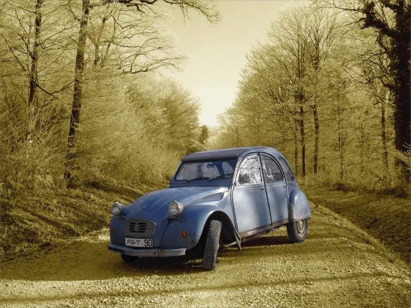 En quoi vous roulez, et quelle sera votre prochaine voiture? 2cv_st10